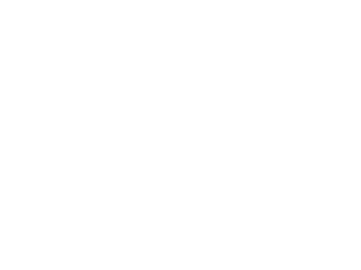 Pimms Médiation Lyon Métropole